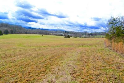 Residential Lots & Land For Sale: Flat Creek Rd