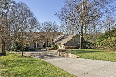 Loudon Single Family Home For Sale: 316 Inagehi Lane