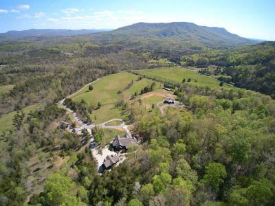 Tellico Plains Single Family Home For Sale: 790 Lick Creek Rd