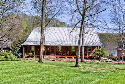 Loudon Single Family Home For Sale: 170 Noya Point
