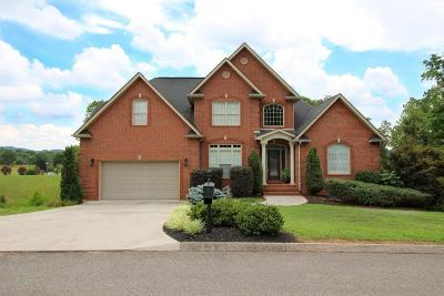 Powell Single Family Home For Sale: 262 Windstone Blvd