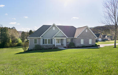 Meigs County, Rhea County, Roane County Single Family Home For Sale: 209 Montgomery View Drive