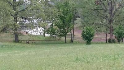 Grainger County Residential Lots & Land For Sale: 133 Baye Rd