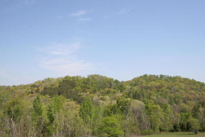 Greenback Residential Lots & Land For Sale: 2275 Peterson Rd