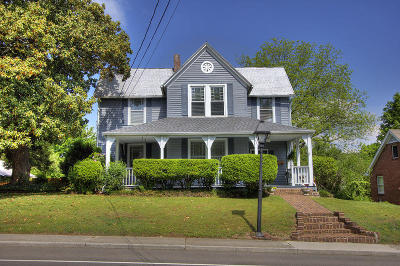 Loudon Single Family Home For Sale: 602 Mulberry St