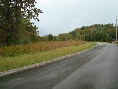 Residential Lots & Land For Sale: Lots 1&2 Leon's Rock