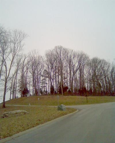 Residential Lots & Land For Sale: 6510 Smoky Mountain Ct.
