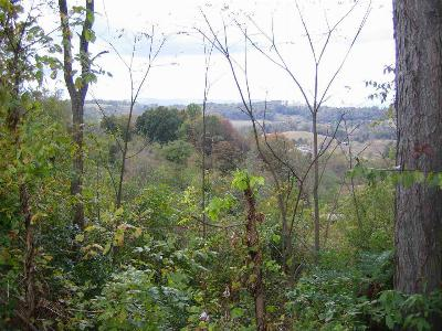 Residential Lots & Land For Sale: Lot 1 Hwy 25e