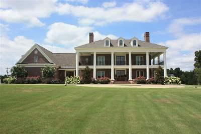 Stantonville Single Family Home For Sale: 288 Irvin Road
