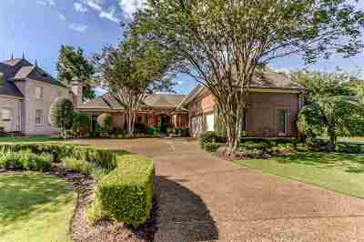 Memphis Single Family Home For Sale: 8614 Southwind