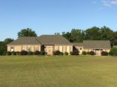 Savannah Single Family Home For Sale: 6170 Highway 226
