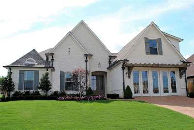 Olive Branch Single Family Home For Sale: 4243 Dockery Drive