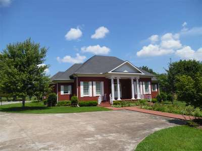 Adamsville Single Family Home For Sale: 3070 Caney Branch