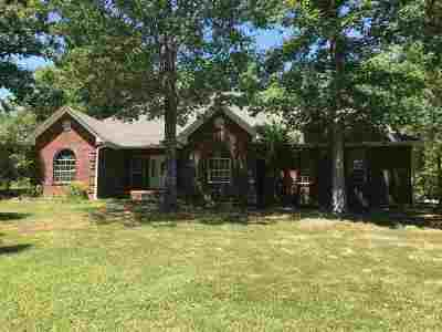 Selmer Single Family Home For Sale: 4316 Pleasant Site