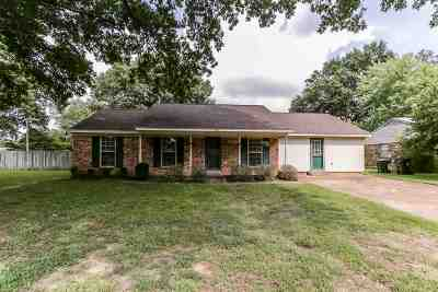 Collierville Single Family Home For Sale: 862 Barbara Lynn