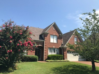Cordova Single Family Home For Sale: 9126 Roundabout