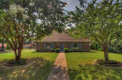 Collierville Single Family Home For Sale: 737 Joe