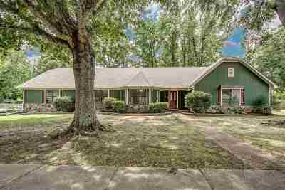Lakeland TN Single Family Home Sold: $170,000