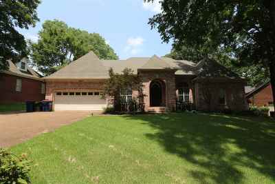 Lakeland Single Family Home For Sale: 9650 White Spruce