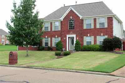 Lakeland Single Family Home For Sale: 3082 Valley Green