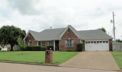 Lakeland Single Family Home For Sale: 3198 Shadow Green