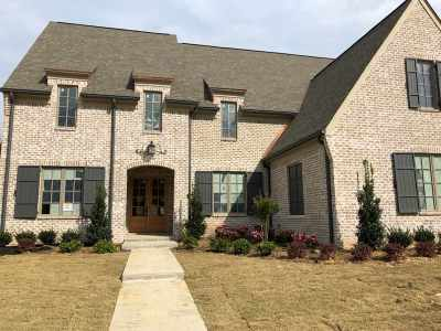 Collierville Single Family Home For Sale: 516 Lambs Brook