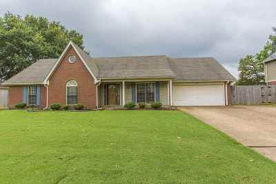 Collierville Single Family Home For Sale: 345 E Valleywood