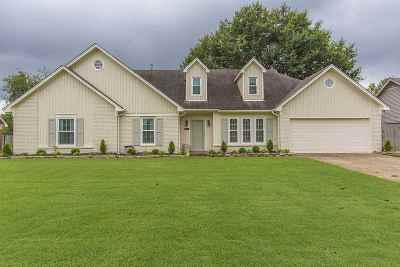 Collierville Single Family Home For Sale: 353 E Valleywood