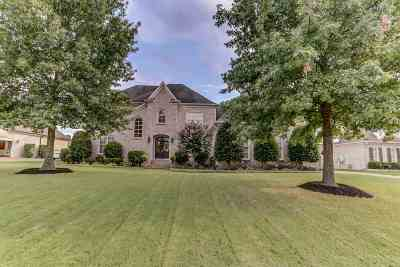 Collierville Single Family Home For Sale: 629 Ridge Peaks