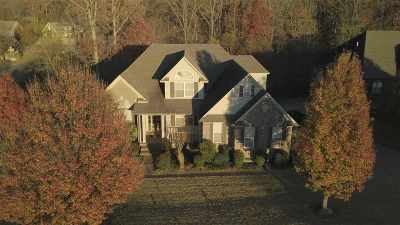 Lakeland Single Family Home For Sale: 9441 Lake Bridge