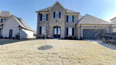 Bartlett Single Family Home For Sale: 8501 Butterfly View