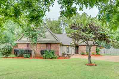 Memphis Single Family Home For Sale: 747 Eclipse