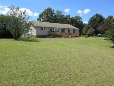 Savannah Single Family Home For Sale: 745 Raymond McNally