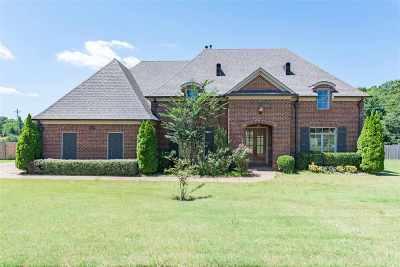 Lakeland Single Family Home For Sale: 3921 Herons Landing