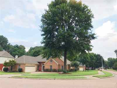 Collierville Single Family Home For Sale: 234 Home