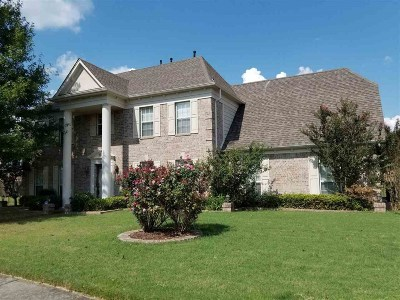 Collierville Single Family Home For Sale: 300 River Branch