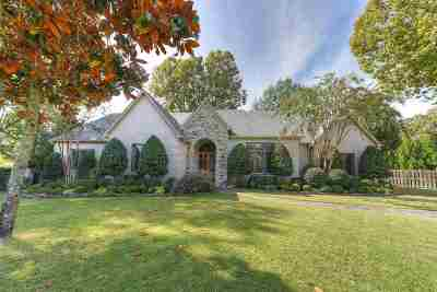 Collierville Single Family Home For Sale: 10321 Stoney Brooke