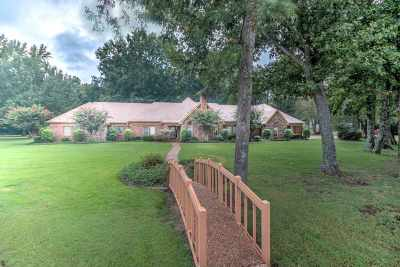 Collierville Single Family Home For Sale: 2269 Houston Levee