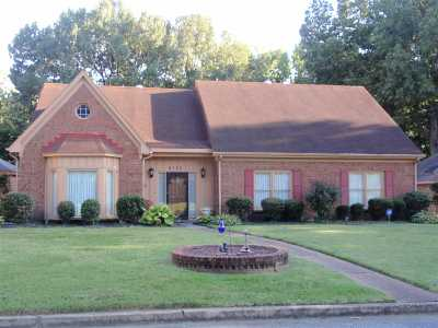Memphis TN Single Family Home For Sale: $255,000