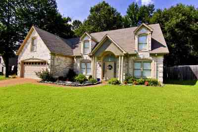 Arlington Single Family Home For Sale: 11910 Country Valley