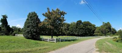 Millington Residential Lots & Land For Sale: 325 Brooks Meadow