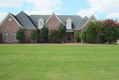Collierville TN Single Family Home For Sale: $399,900