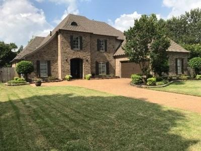 Collierville Single Family Home For Sale: 9960 Houston Oak
