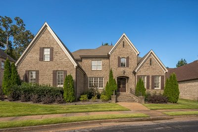 Collierville Single Family Home For Sale: 2823 Bayhill Woods