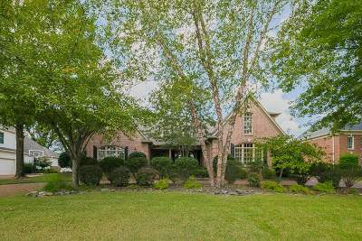 Collierville Single Family Home For Sale: 2136 Gallina