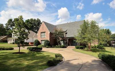 Collierville Single Family Home For Sale: 358 W College