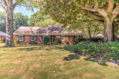 Memphis Single Family Home For Sale: 1097 Ivy