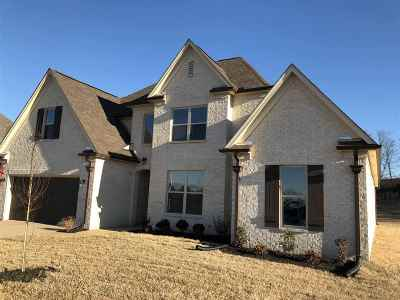 Bartlett Single Family Home For Sale: 8497 Butterfly View