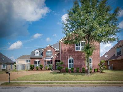 Memphis Single Family Home For Sale: 138 Wind Breeze
