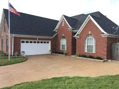 Bartlett Single Family Home For Sale: 8224 Blue Lagoon